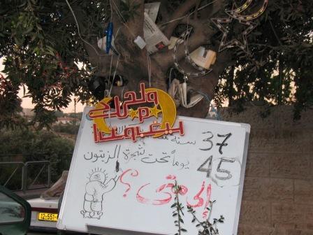 152 Sheik Jarrah